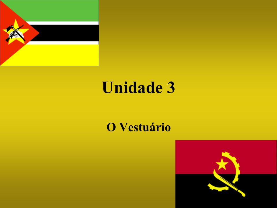 O que vamos aprender nesta Unidade… Identificar artigos de roupa Falar das compras Identificar cores Falar de tecidos, estilos e padrões Descrever acçoes diarias usando o reflexivo Falar no passado Cultura, geografia e historia de Moçambique e Angola incluindo a guerra da Ultramar
