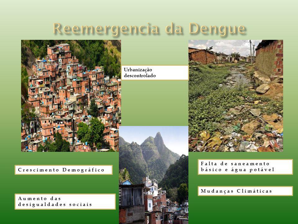 Crescimento Demográfico Urbanização descontrolado Falta de saneamento básico e água potável Aumento das desigualdades sociais Mudanças Climáticas