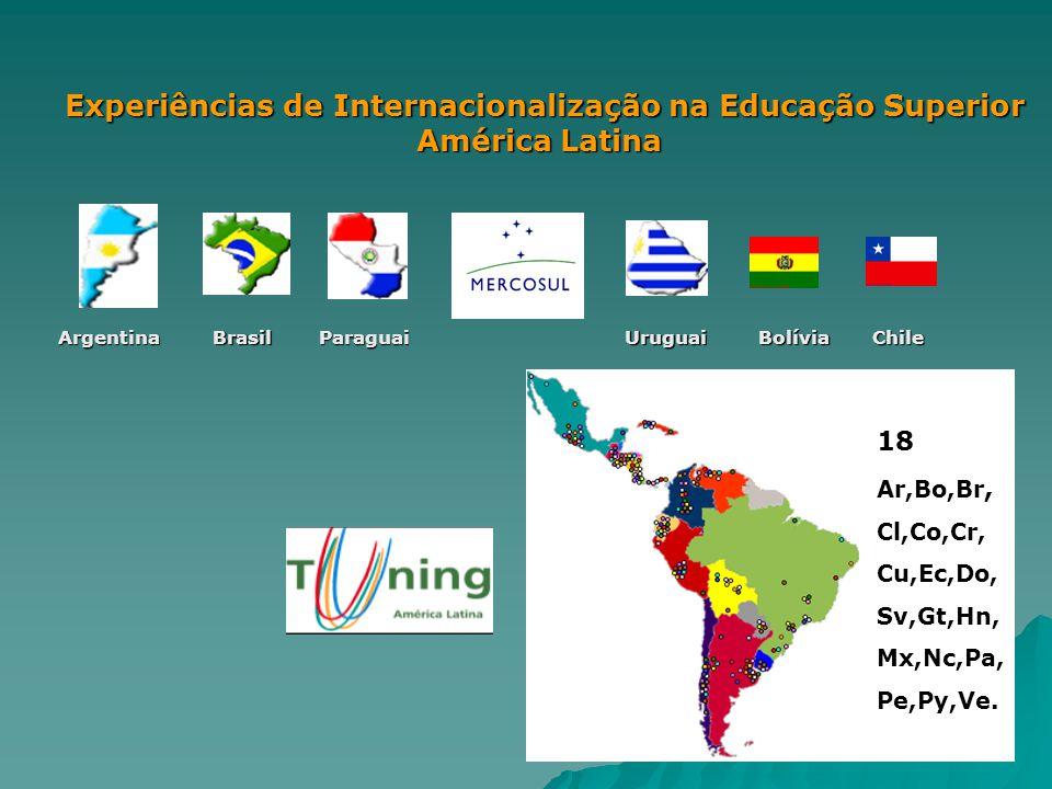 Experiências de Internacionalização na Educação Superior América Latina ArgentinaBrasilParaguaiUruguaiBolíviaChile 18 Ar,Bo,Br, Cl,Co,Cr, Cu,Ec,Do, Sv