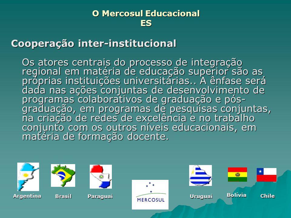 O Mercosul Educacional ES Cooperação inter-institucional Os atores centrais do processo de integração regional em matéria de educação superior são as
