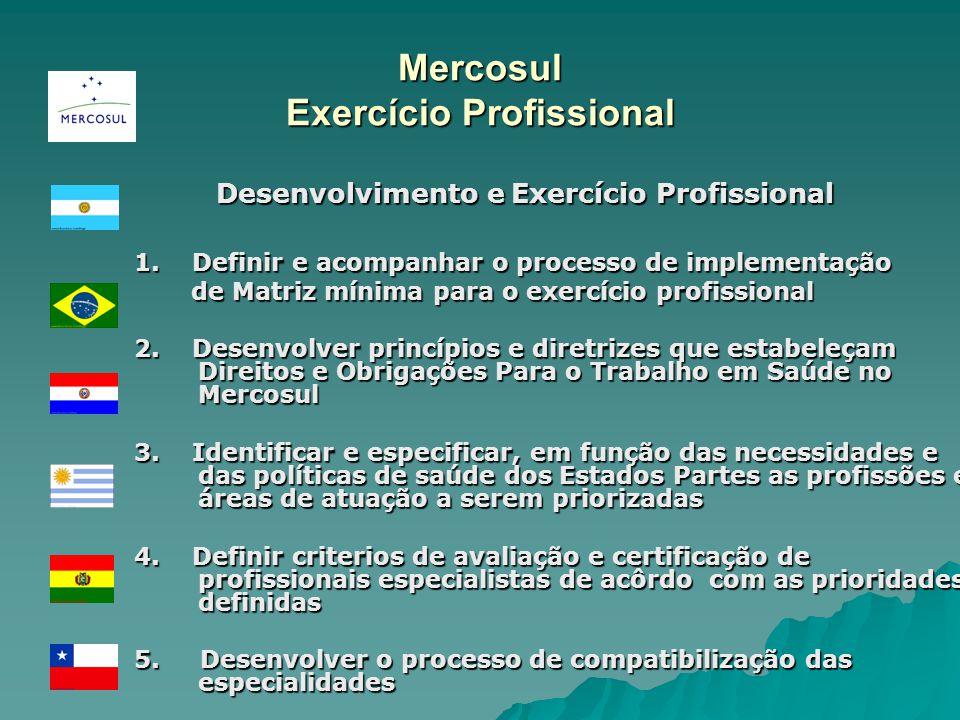 Mercosul Exercício Profissional Desenvolvimento e Exercício Profissional Desenvolvimento e Exercício Profissional 1. Definir e acompanhar o processo d