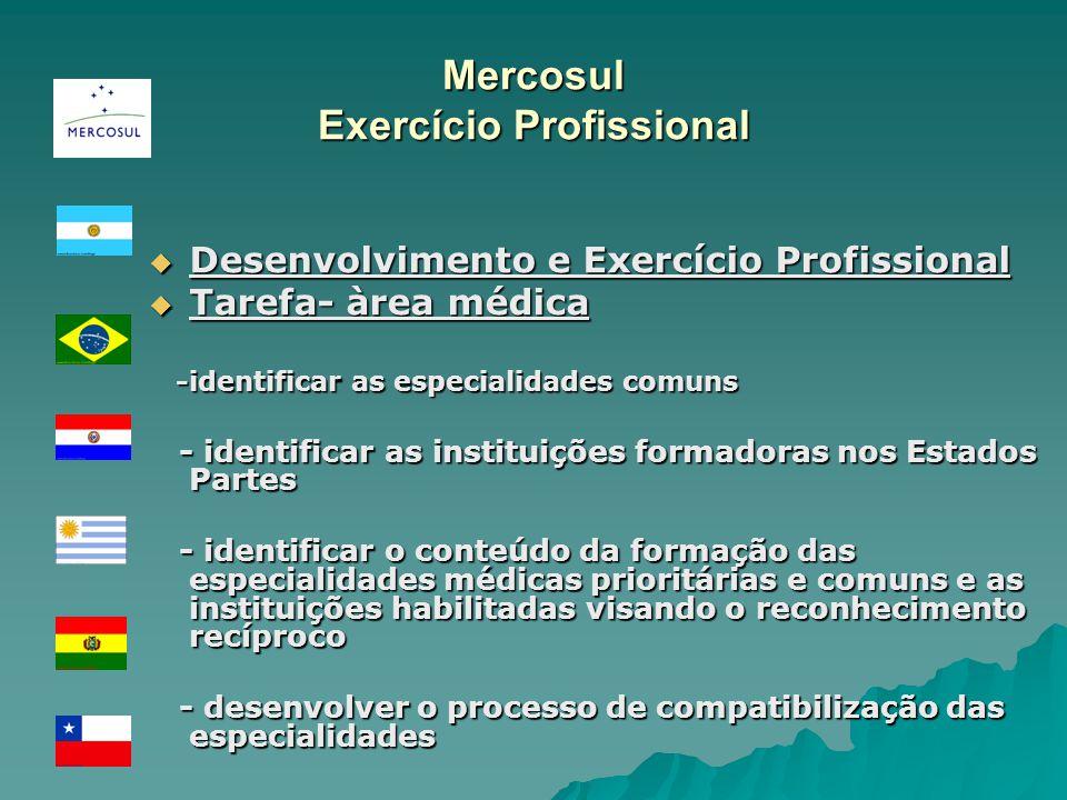Mercosul Exercício Profissional Desenvolvimento e Exercício Profissional Desenvolvimento e Exercício Profissional Tarefa- àrea médica Tarefa- àrea méd