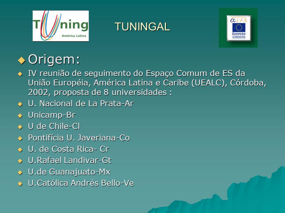 TUNINGAL Origem: Origem: IV reunião de seguimento do Espaço Comum de ES da União Européia, América Latina e Caribe (UEALC), Córdoba, 2002, proposta de