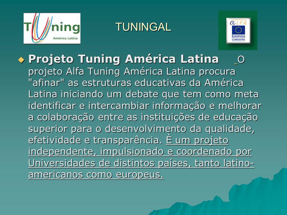TUNINGAL Projeto Tuning América Latina O projeto Alfa Tuning América Latina procura