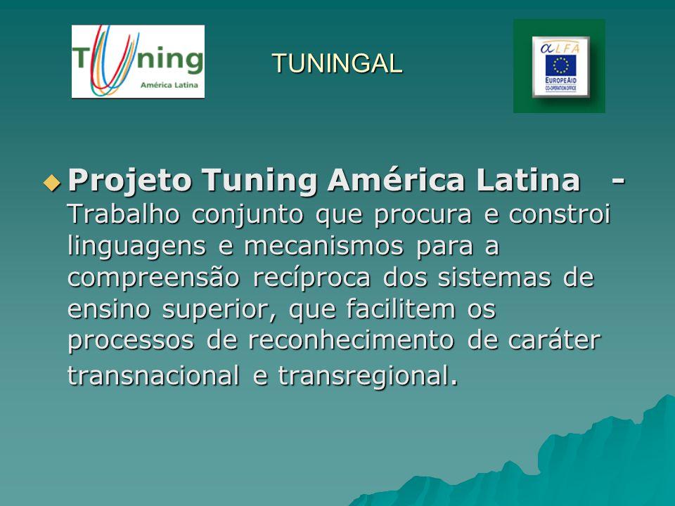 TUNINGAL Projeto Tuning América Latina - Trabalho conjunto que procura e constroi linguagens e mecanismos para a compreensão recíproca dos sistemas de