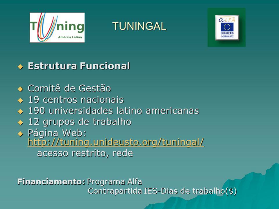TUNINGAL Estrutura Funcional Estrutura Funcional Comitê de Gestão Comitê de Gestão 19 centros nacionais 19 centros nacionais 190 universidades latino