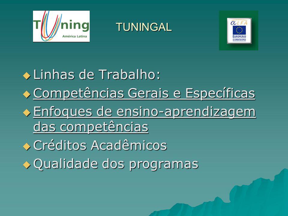 TUNINGAL Linhas de Trabalho: Linhas de Trabalho: Competências Gerais e Específicas Competências Gerais e Específicas Enfoques de ensino-aprendizagem d
