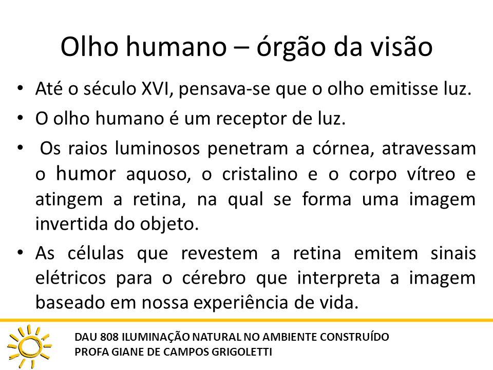 Olho humano – órgão da visão Até o século XVI, pensava-se que o olho emitisse luz. O olho humano é um receptor de luz. Os raios luminosos penetram a c