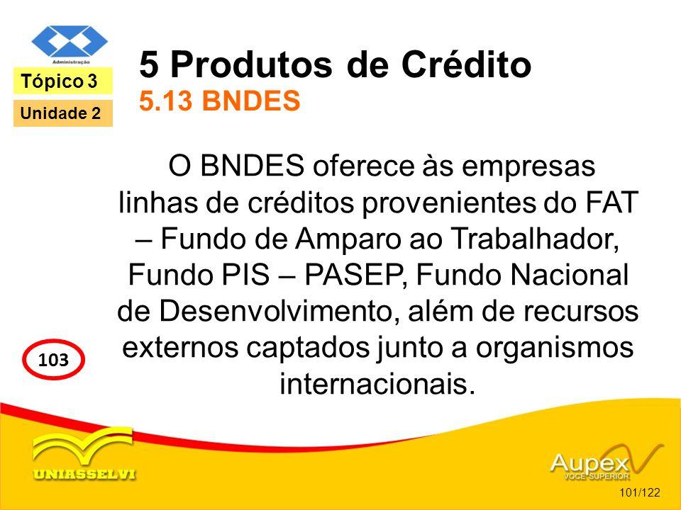 5 Produtos de Crédito 5.13 BNDES O BNDES oferece às empresas linhas de créditos provenientes do FAT – Fundo de Amparo ao Trabalhador, Fundo PIS – PASE