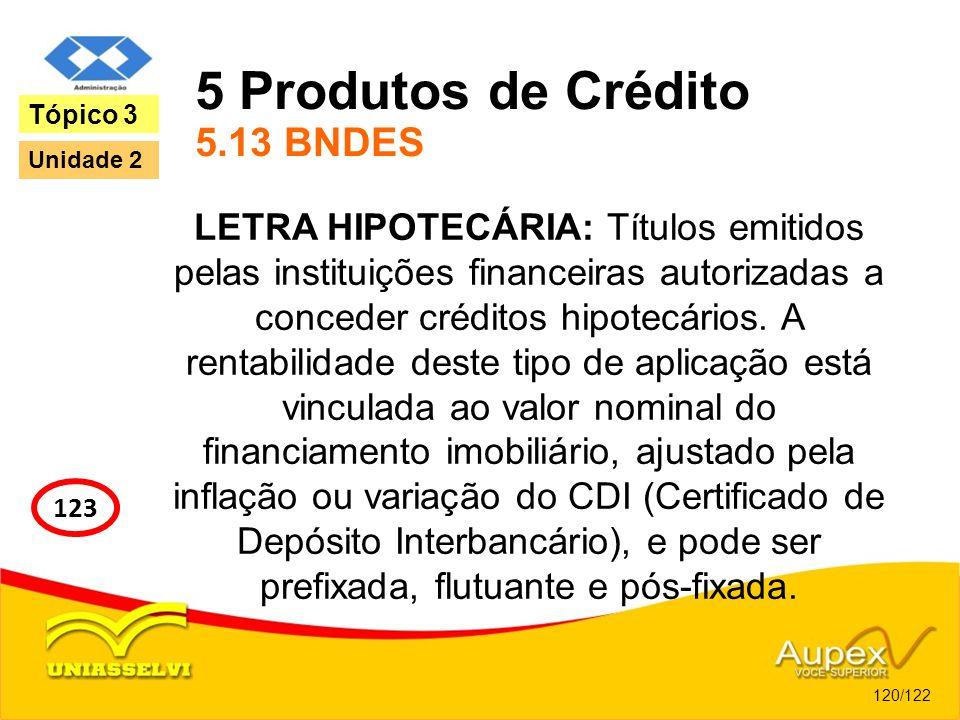 5 Produtos de Crédito 5.13 BNDES LETRA HIPOTECÁRIA: Títulos emitidos pelas instituições financeiras autorizadas a conceder créditos hipotecários. A re