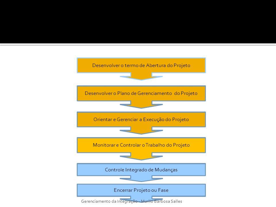 Desenvolver o termo de Abertura do Projeto Desenvolver o Plano de Gerenciamento do Projeto Controle Integrado de Mudanças Orientar e Gerenciar a Execu