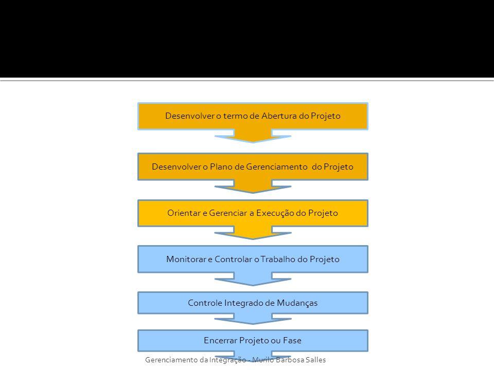 Irá exigir do gerente do projeto e sua equipe as seguintes ações, afim de realizar o trabalho definido na declaração do escopo: - Executar as atividades para realizar os objetivos do projeto; - Empreender esforços e usar recursos financeiros para realizar os objetivos do projeto; - Gerenciar os membros da equipe do projeto que assim foram designados; - Obter as cotações, as licitações, as ofertas, as propostas conforme adequado; - Selecionar os fornecedores escolhendo-os entre os possíveis; - Obter, gerenciar, e usar recursos, inclusive materiais, ferramentas, equipamentos e instalações; - Implementar as normas e métodos planejados; - Criar, controlar, verificar e validar as entregas do projeto; - Gerenciar riscos e implementar as atividades de resposta aos riscos; - Gerenciar os fornecedores; - Adaptar as mudanças aprovadas ao escopo, planos e ambiente do projeto; - Estabelecer e gerenciar os canais de comunicação do projeto, tanto externos quanto internos à equipe do projeto; - Coletar os dados do projeto e relatar o custo, custo, cronograma, progresso técnico e da qualidade e informações sobre o andamento do projeto para facilitar a previsão; - Coletar e documentar as lições aprendidas e implementar atividades de melhoria nos processos aprovada.