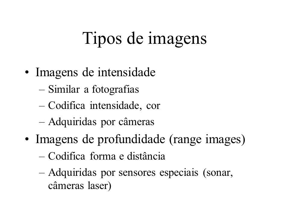 Tipos de imagens Imagens de intensidade –Similar a fotografias –Codifica intensidade, cor –Adquiridas por câmeras Imagens de profundidade (range images) –Codifica forma e distância –Adquiridas por sensores especiais (sonar, câmeras laser)
