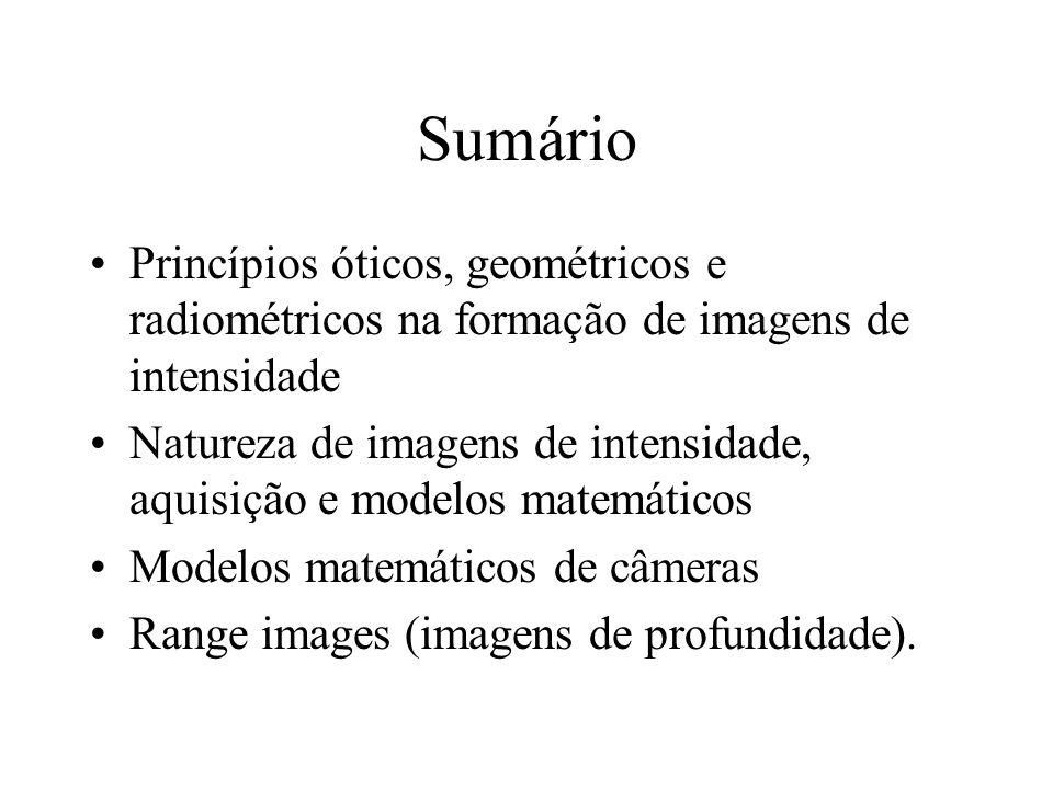 Sumário Princípios óticos, geométricos e radiométricos na formação de imagens de intensidade Natureza de imagens de intensidade, aquisição e modelos matemáticos Modelos matemáticos de câmeras Range images (imagens de profundidade).