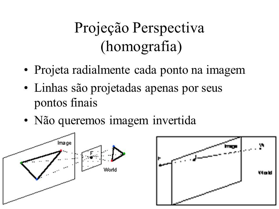 Projeção Perspectiva (homografia) Projeta radialmente cada ponto na imagem Linhas são projetadas apenas por seus pontos finais Não queremos imagem invertida