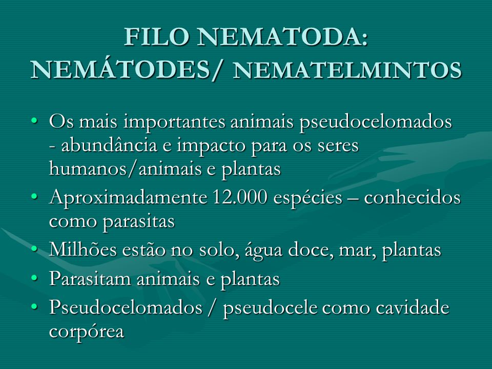 Ascaris O gênero Ascaris é formado de vermes com várias espécies parasitas de animais mamíferos, inclusive o homem; entre elas destacam-se:O gênero Ascaris é formado de vermes com várias espécies parasitas de animais mamíferos, inclusive o homem; entre elas destacam-se: Ascaris lunbricóides, o parasita mais comum do homem;Ascaris lunbricóides, o parasita mais comum do homem; Ascaris megalocephala, parasita do boiAscaris megalocephala, parasita do boi Ascaris suum, parasita do porco.Ascaris suum, parasita do porco.