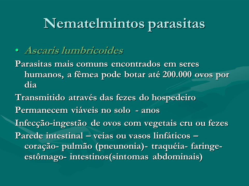 Nematelmintos parasitas Ascaris lumbricoidesAscaris lumbricoides Parasitas mais comuns encontrados em seres humanos, a fêmea pode botar até 200.000 ov