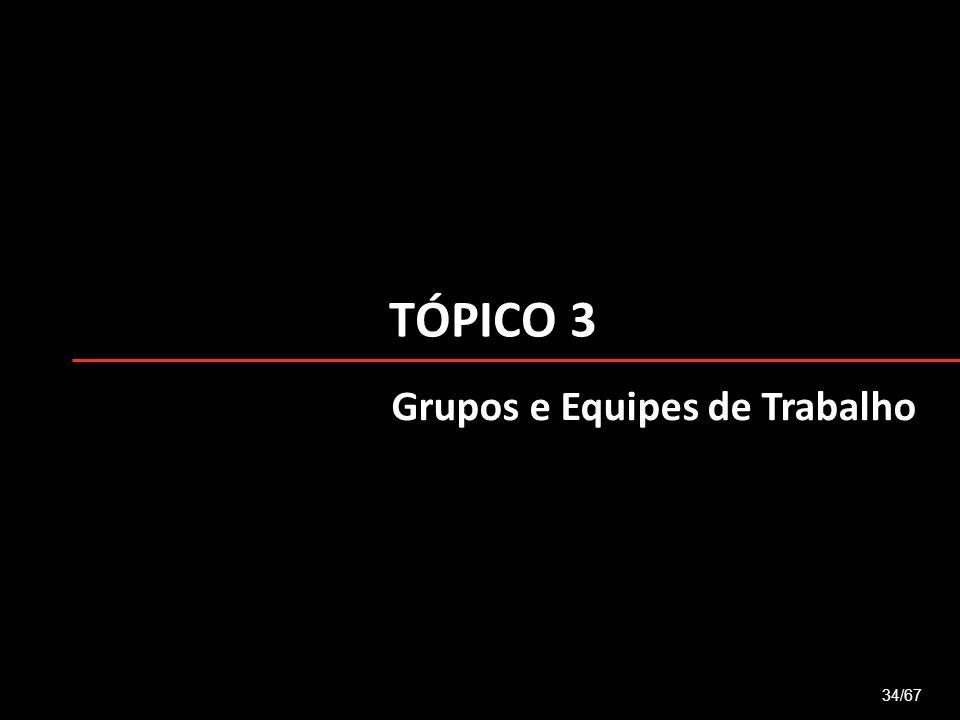 TÓPICO 3 34/67 Grupos e Equipes de Trabalho