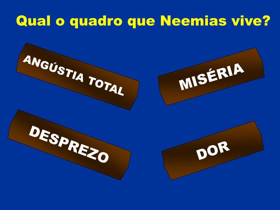 Qual o quadro que Neemias vive? ANGÚSTIA TOTAL MISÉRIA DESPREZO DOR