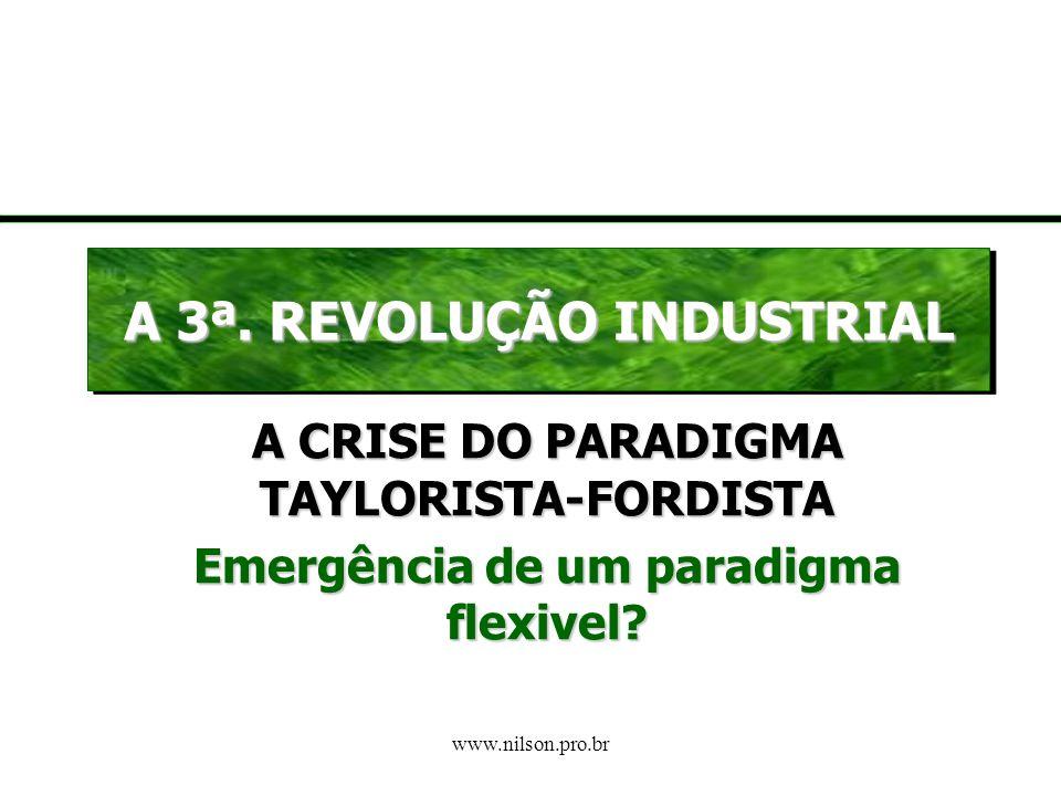 www.nilson.pro.br O Contexto Brasileiro Semelhante ao que aconteceu em outros países subdesenvolvidos, nunca se efetivou no Brasil um Estado de Bem-Es