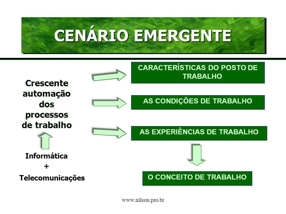 www.nilson.pro.br Intenso processo de reestruturação do mundo do trabalho Mundo do Trabalho Múltiplas identidades Mudança de significados Ampliação im