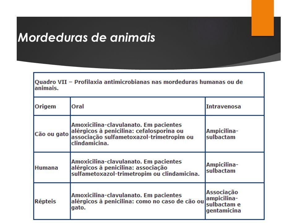 Mordeduras de animais