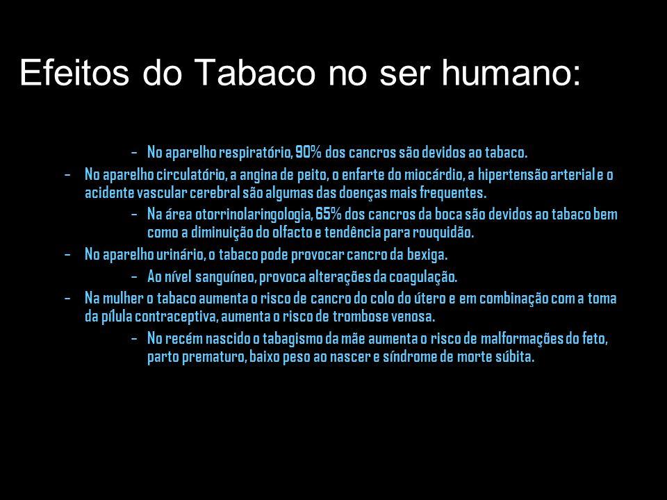 Efeitos do Tabaco no ser humano: – No aparelho respiratório, 90% dos cancros são devidos ao tabaco. – No aparelho circulatório, a angina de peito, o e