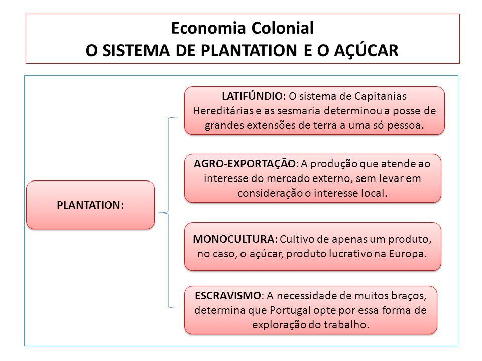 Economia Colonial O SISTEMA DE PLANTATION E O AÇÚCAR PLANTATION: LATIFÚNDIO: O sistema de Capitanias Hereditárias e as sesmaria determinou a posse de