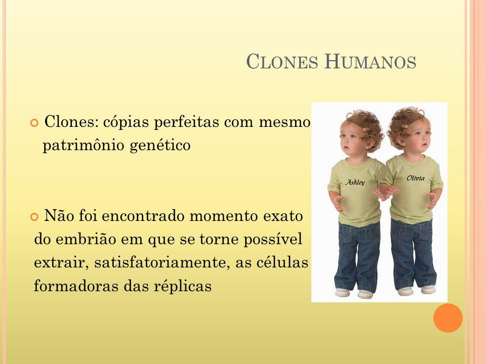 C LONES H UMANOS Clones: cópias perfeitas com mesmo patrimônio genético Não foi encontrado momento exato do embrião em que se torne possível extrair,
