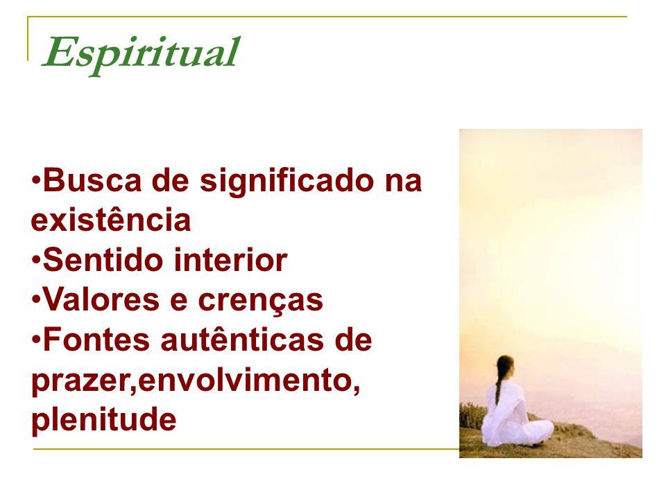 Busca de significado na existência Sentido interior Valores e crenças Fontes autênticas de prazer,envolvimento, plenitude Espiritual