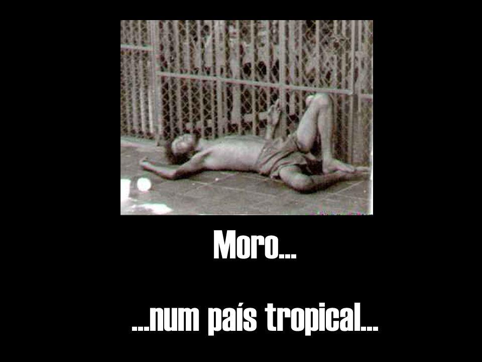 Moro......num país tropical...