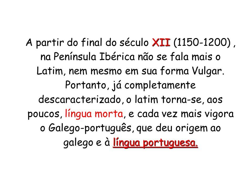 XII língua portuguesa.