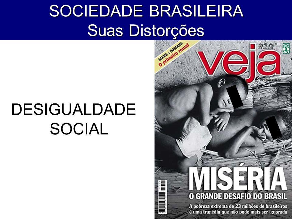 SOCIEDADE BRASILEIRA Suas Distorções DESIGUALDADE SOCIAL