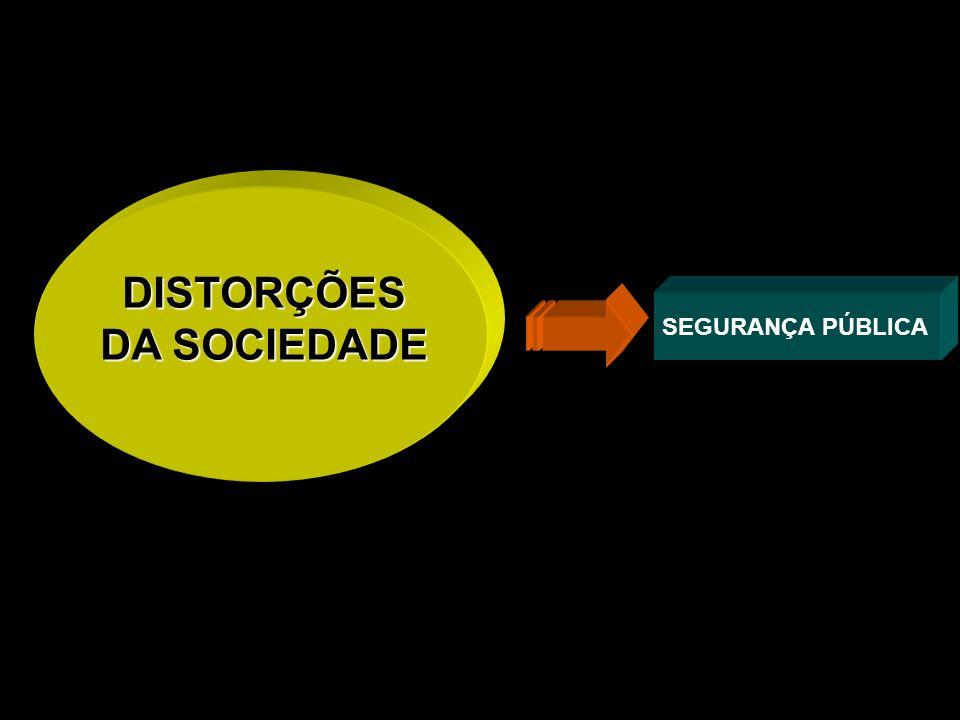 DISTORÇÕES DA SOCIEDADE SEGURANÇA PÚBLICA