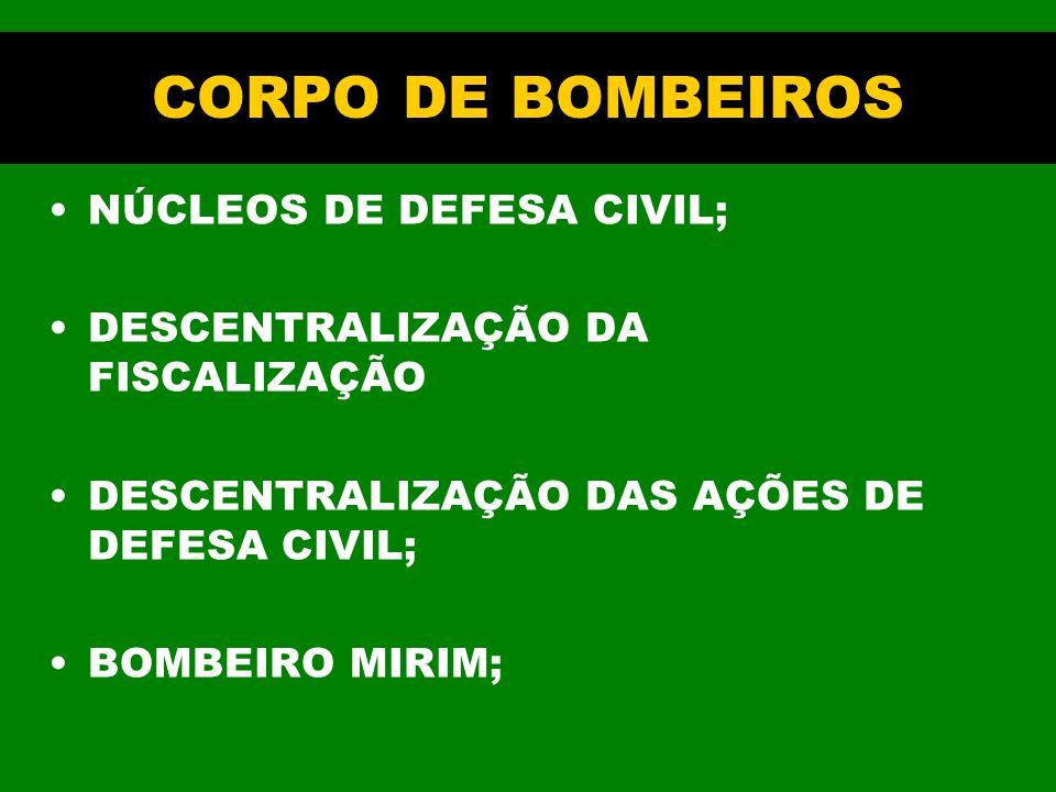CORPO DE BOMBEIROS NÚCLEOS DE DEFESA CIVIL; DESCENTRALIZAÇÃO DA FISCALIZAÇÃO DESCENTRALIZAÇÃO DAS AÇÕES DE DEFESA CIVIL; BOMBEIRO MIRIM;