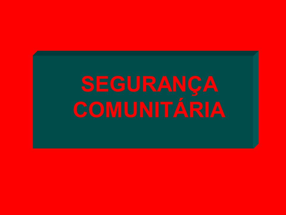 SEGURANÇA COMUNITÁRIA