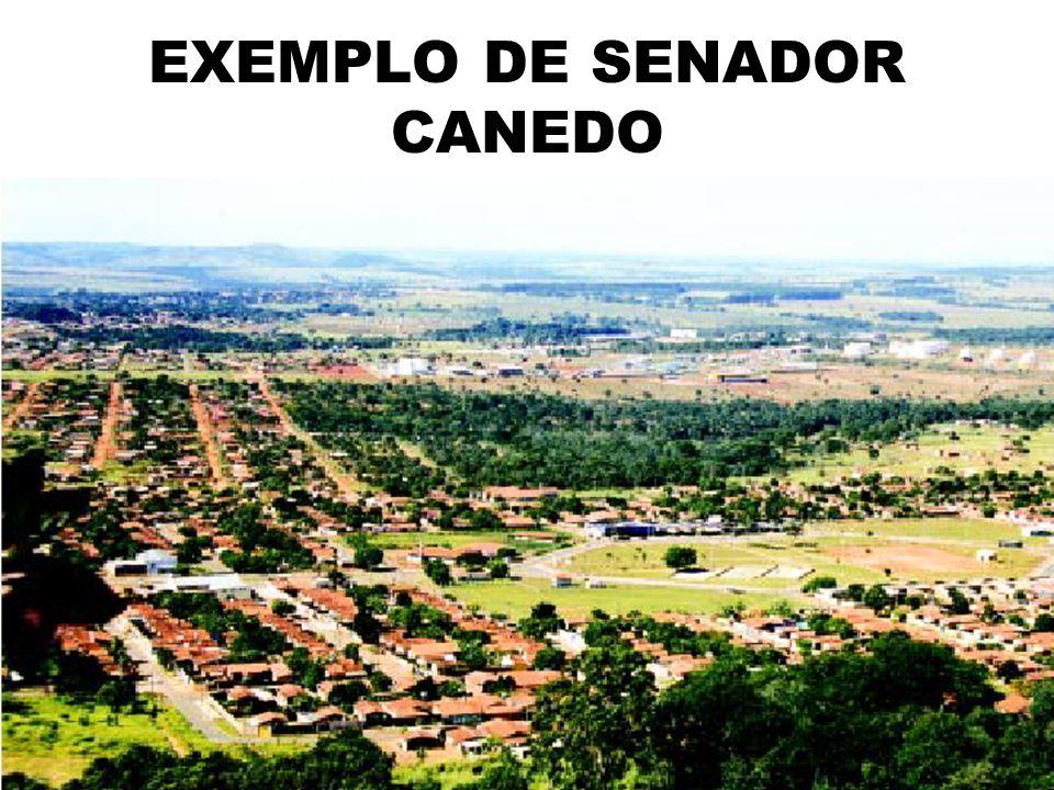 EXEMPLO DE SENADOR CANEDO FOTO DE SENADOR CANEDO
