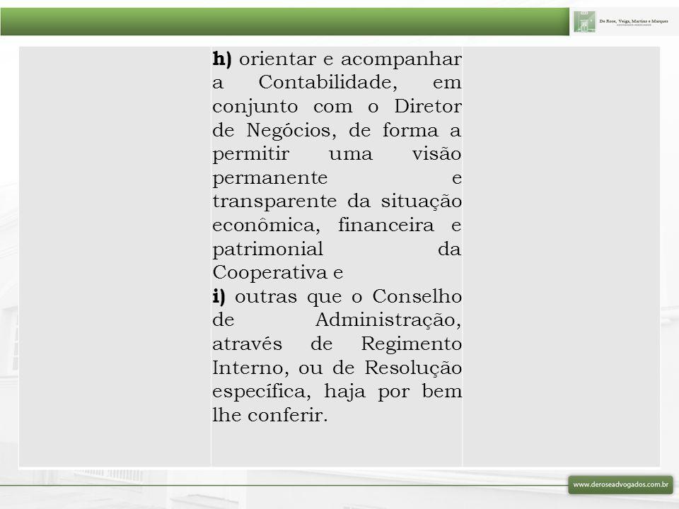 h) orientar e acompanhar a Contabilidade, em conjunto com o Diretor de Negócios, de forma a permitir uma visão permanente e transparente da situação e