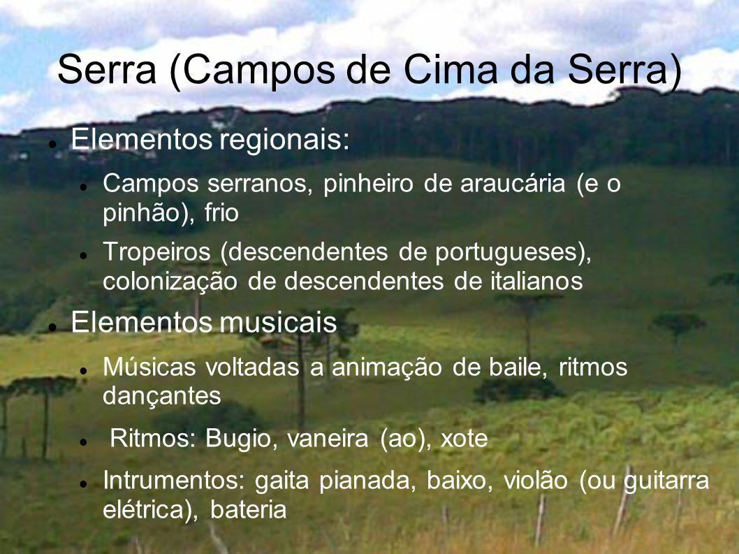 Serra (Campos de Cima da Serra) Elementos regionais: Campos serranos, pinheiro de araucária (e o pinhão), frio Tropeiros (descendentes de portugueses)