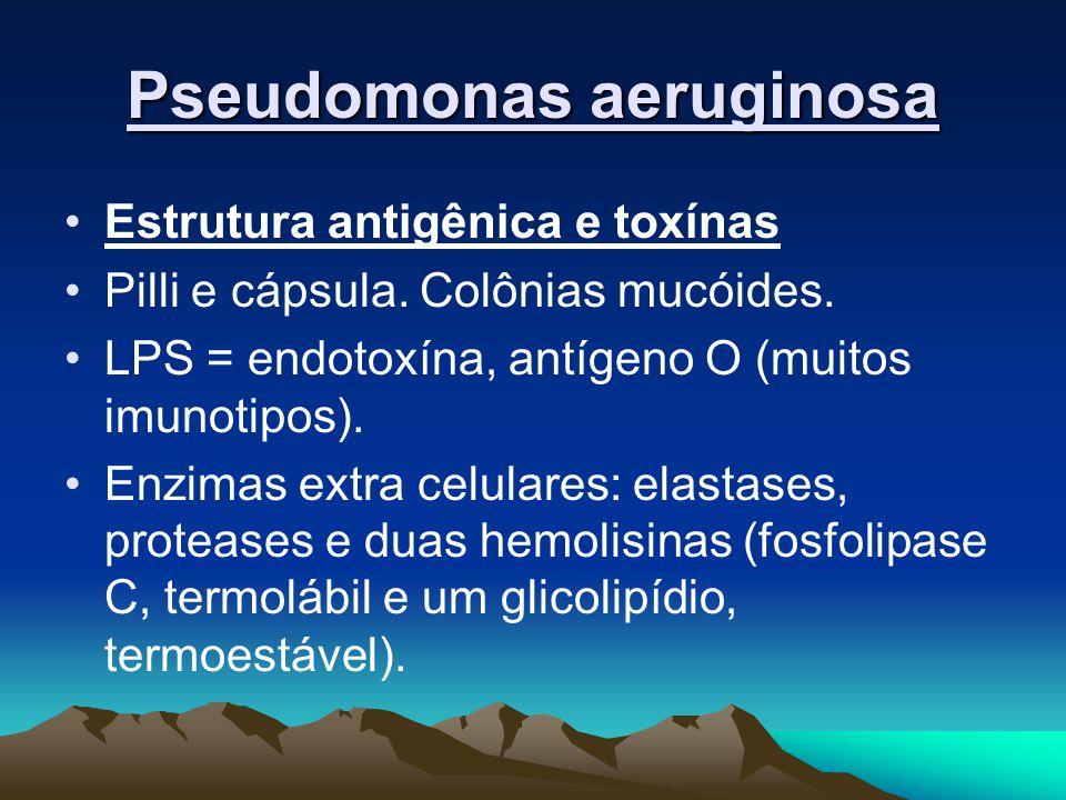 Pseudomonas aeruginosa Estrutura antigênica e toxínas Pilli e cápsula. Colônias mucóides. LPS = endotoxína, antígeno O (muitos imunotipos). Enzimas ex