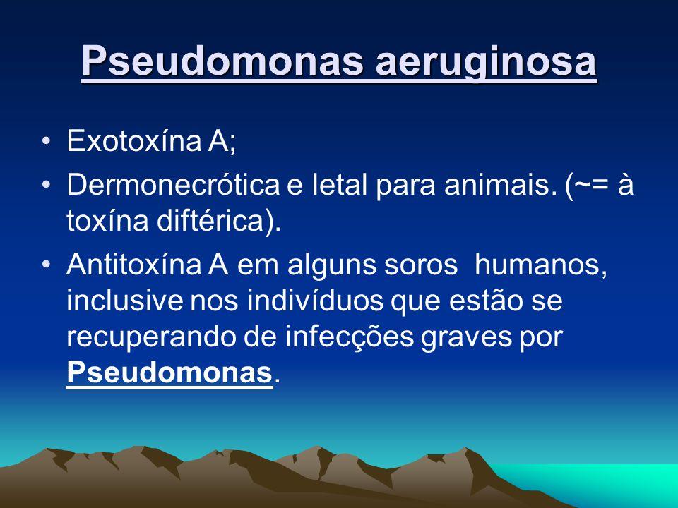 Pseudomonas aeruginosa Exotoxína A; Dermonecrótica e letal para animais.