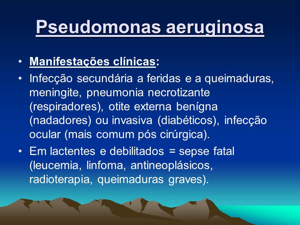 Pseudomonas aeruginosa Manifestações clínicas: Infecção secundária a feridas e a queimaduras, meningite, pneumonia necrotizante (respiradores), otite