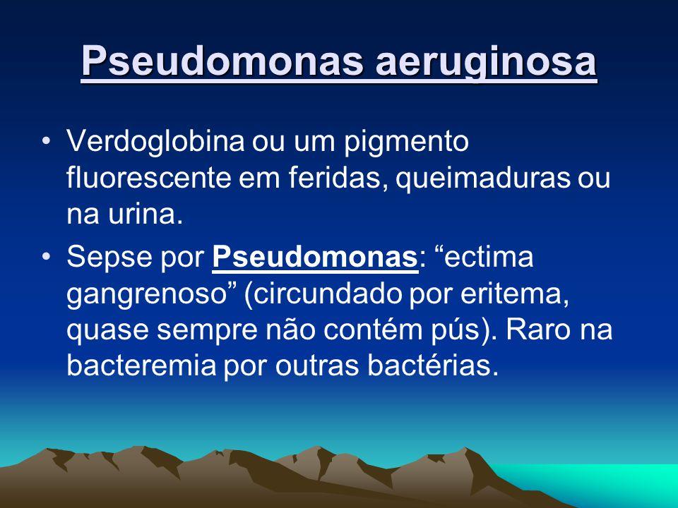 Pseudomonas aeruginosa Verdoglobina ou um pigmento fluorescente em feridas, queimaduras ou na urina.
