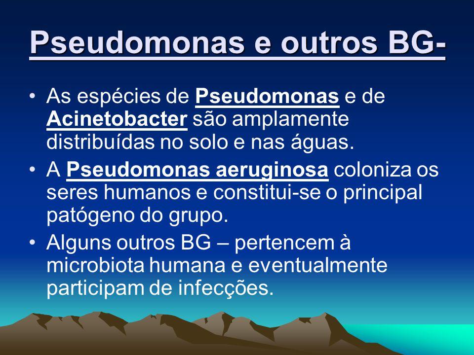 As espécies de Pseudomonas e de Acinetobacter são amplamente distribuídas no solo e nas águas. A Pseudomonas aeruginosa coloniza os seres humanos e co
