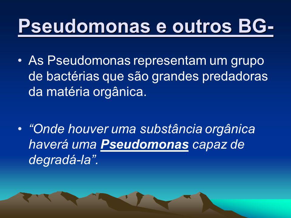 As Pseudomonas representam um grupo de bactérias que são grandes predadoras da matéria orgânica. Onde houver uma substância orgânica haverá uma Pseudo