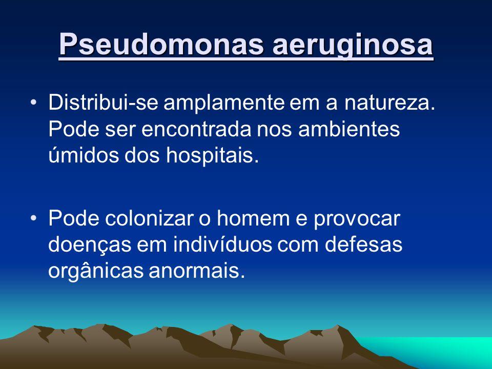 Pseudomonas aeruginosa Distribui-se amplamente em a natureza. Pode ser encontrada nos ambientes úmidos dos hospitais. Pode colonizar o homem e provoca
