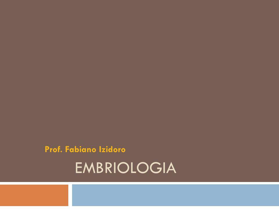 A embriologia é a parte da Biologia que estuda o desenvolvimento dos embriões animais.