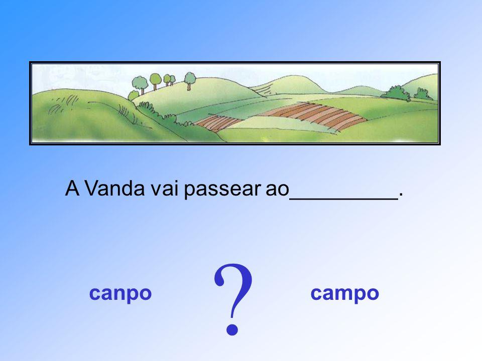 A Vanda vai passear ao_________. canpocampo ?