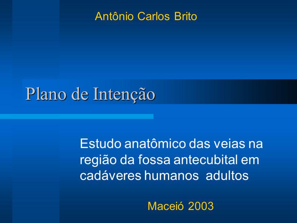 Plano de Intenção Estudo anatômico das veias na região da fossa antecubital em cadáveres humanos adultos Maceió 2003 Antônio Carlos Brito