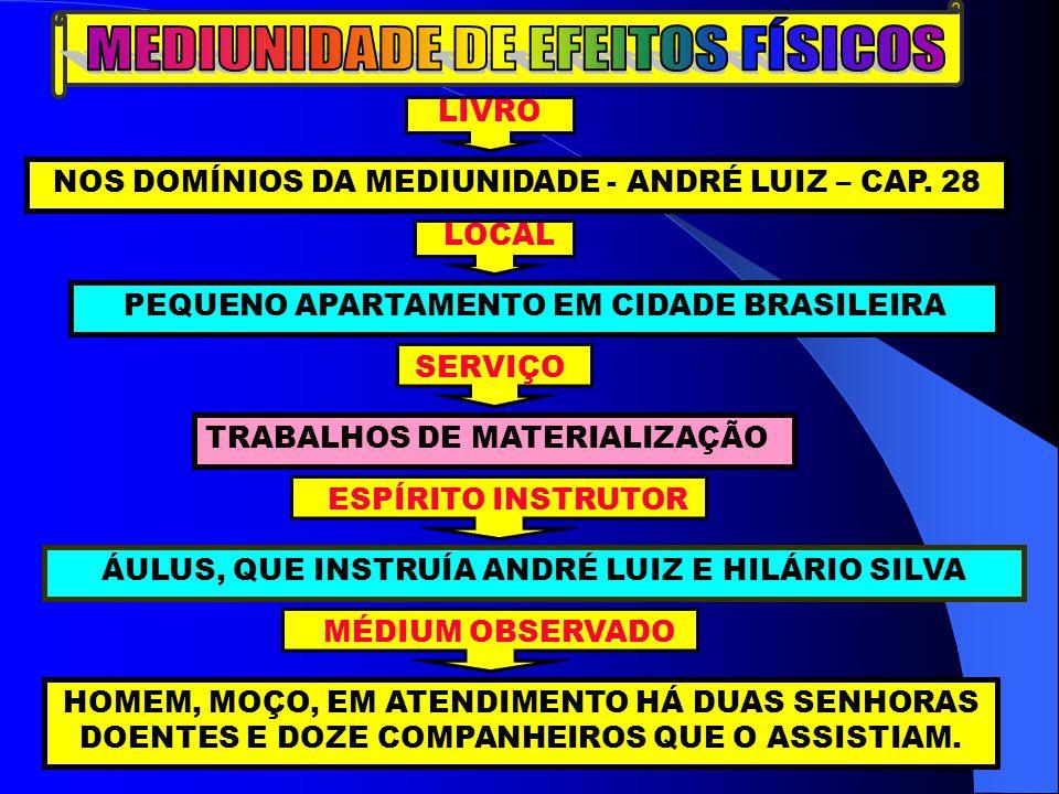 LIVRO NOS DOMÍNIOS DA MEDIUNIDADE - ANDRÉ LUIZ – CAP. 28 LOCAL PEQUENO APARTAMENTO EM CIDADE BRASILEIRA SERVIÇO TRABALHOS DE MATERIALIZAÇÃO ESPÍRITO I